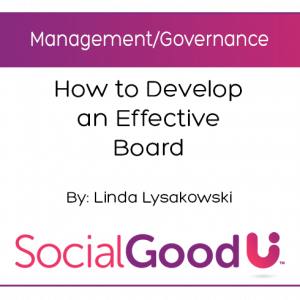 SocialGoodU -- How to Develop an Effective Board